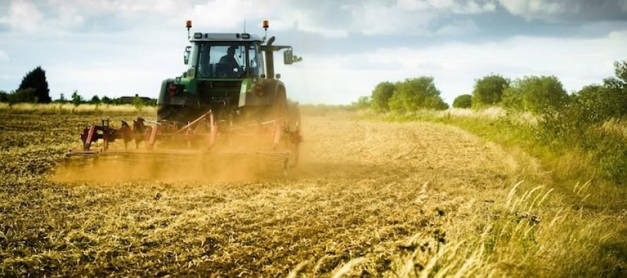 Imprese agricole in Campania: dalla Regione 4 milioni di incentivi per la consulenza aziendale