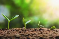 Giovani agricoltori: dalla Regione Piemonte arrivano 1.800.000 euro