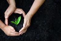 """Giornata Mondiale dell'Ambiente 2019: salute a rischio con lo smog, serve la svolta """"green"""""""