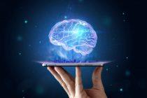Innovazione: sottoscritti dal MISE 30 accordi per ricerca e sviluppo
